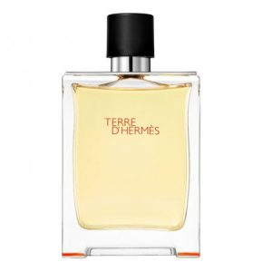 Recenzie Hermes Terre D'Hermes