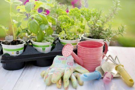 cadouri pentru părinți-Unelte și accesorii pentru grădinărit pentru părinții pasionați de horticultură