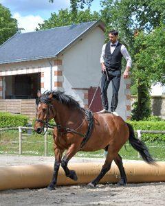 Lecții de călărie pentru un tată sportiv-cadouri pentru tați