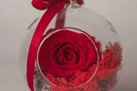 cadou pt iubita trandafir criogenat