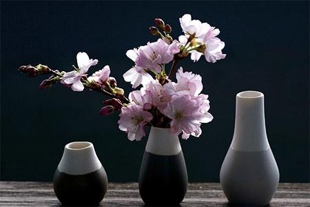 Vas decorativ sau o vază spectaculoasă